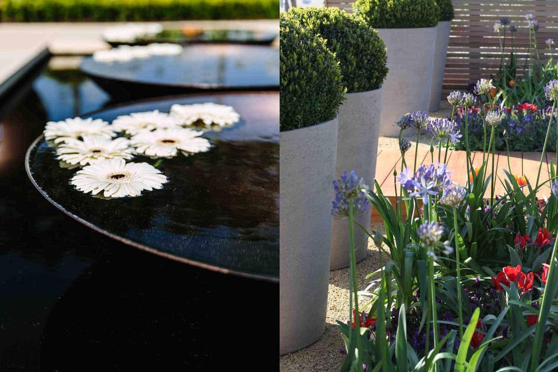 Bestall & Co Landscape Design Harroagte Flower Show