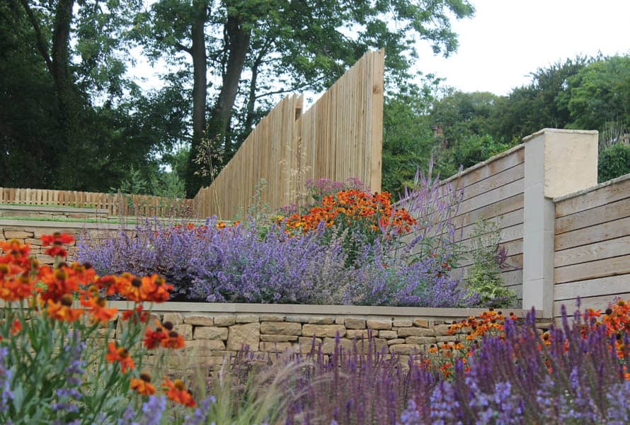 Terrace Delight-Bestall-and-co-yorkshire-modern-planting-dutch-planting Modern terraced garden
