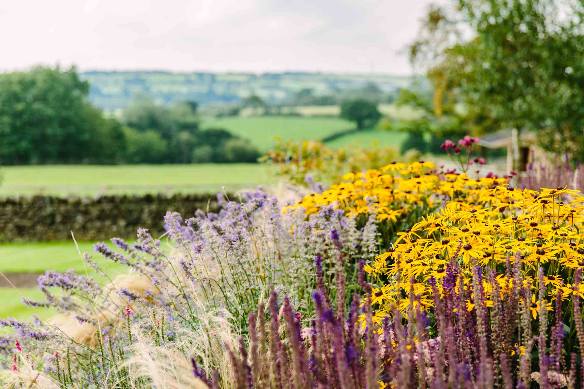 Country Garden-bestall--and-co-yorkshire-modern-planting-dutch-planting Terraced Garden bestall and co Beautiful Planting Planting Design Dry Stone Wall English country classic garden Kat Weatherill