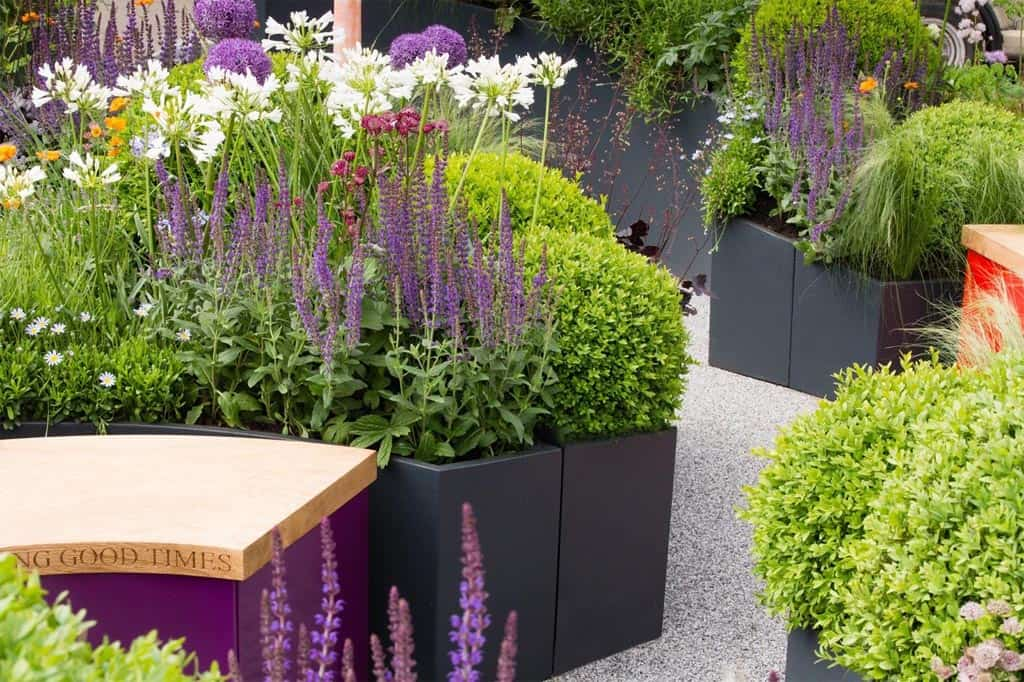 Chelsea Flower Show 2016 - Curved planters - curved benches - grey planters - buxus balls - Bestall & Co - Beautiful planting - fresh gardens - salvia - astrantia - agapanthus - resin bound gravel - chelsea