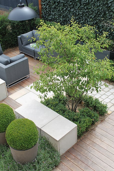 Outdoor rooms -bestall-and-co--modern-planting- Beautiful Planting -Planting Design- Box Balls-urban garden-Stepping stones-Chelsea Garden Designer Yorkshire- Chelsea Garden Designer Northern England- Lee Bestall-Paul Robinson-Society Of Garden Designers -Taxus Hedge- Buxus Hedge - Box ball in planter - Sawn York Paving-outdoor all weather sofa - bestall collection- iroko decking -lavender -ivy screens - Outdoor heat lamp