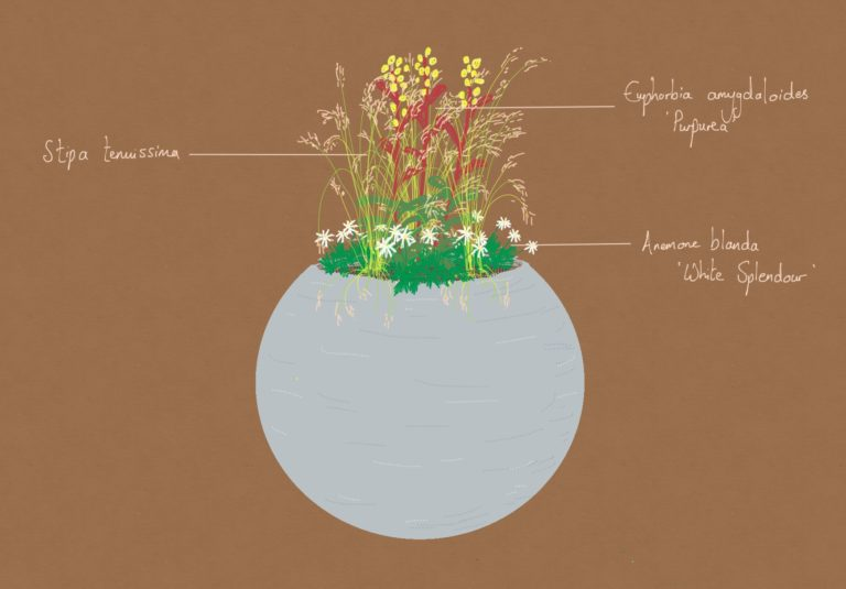 The Art of the Planter
