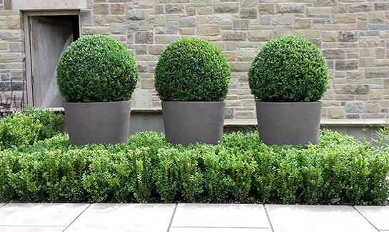 Garden-Styling-Planted-Containers
