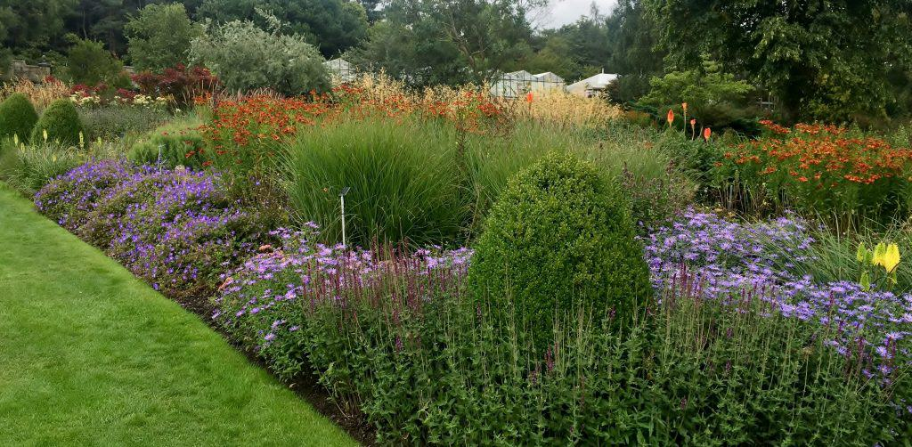 Colour wheel planting