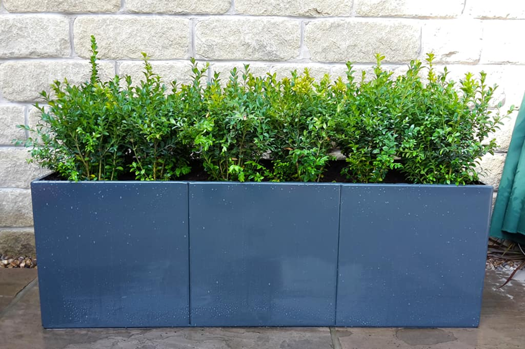 Cube Metal Planters