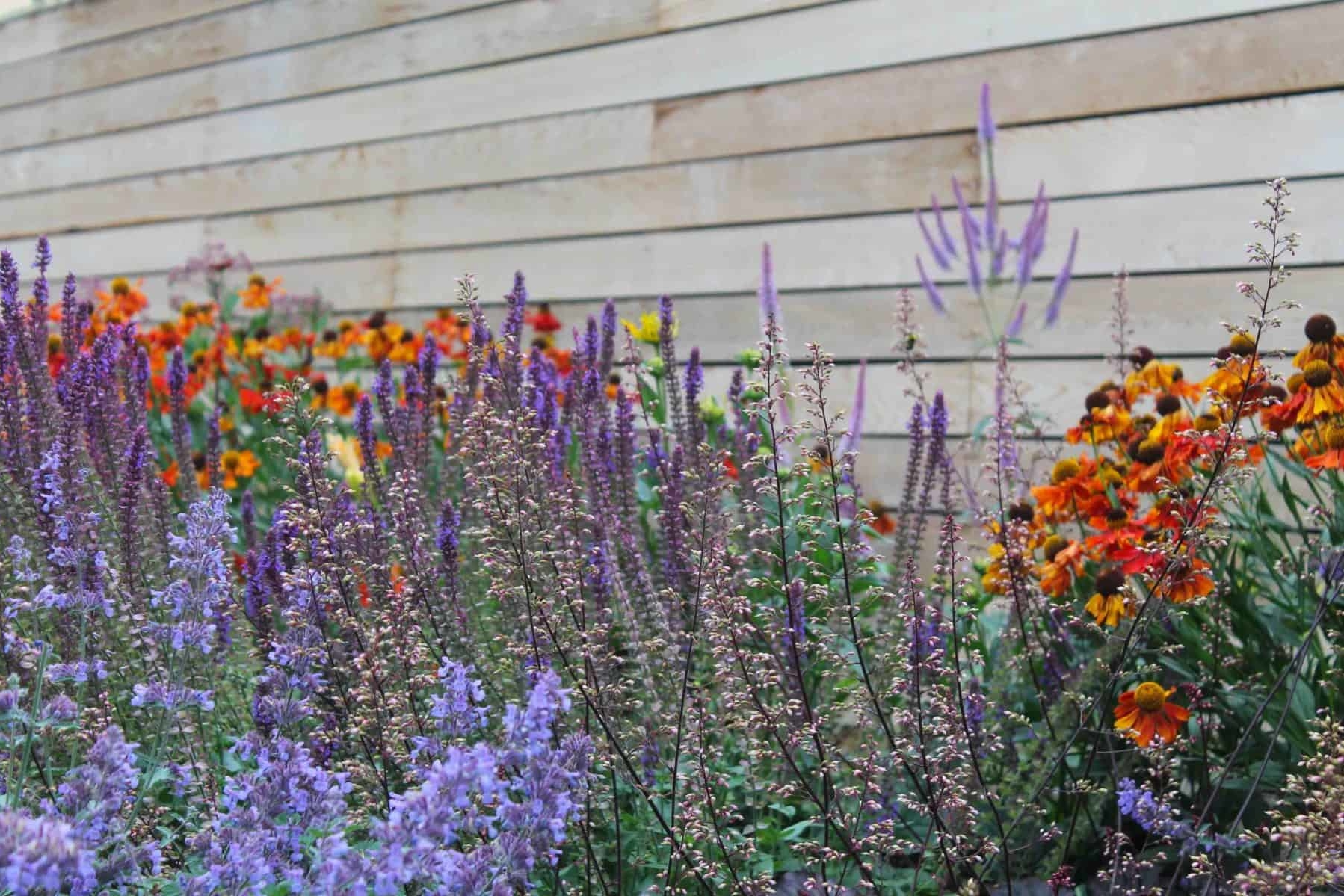Colourful Planting