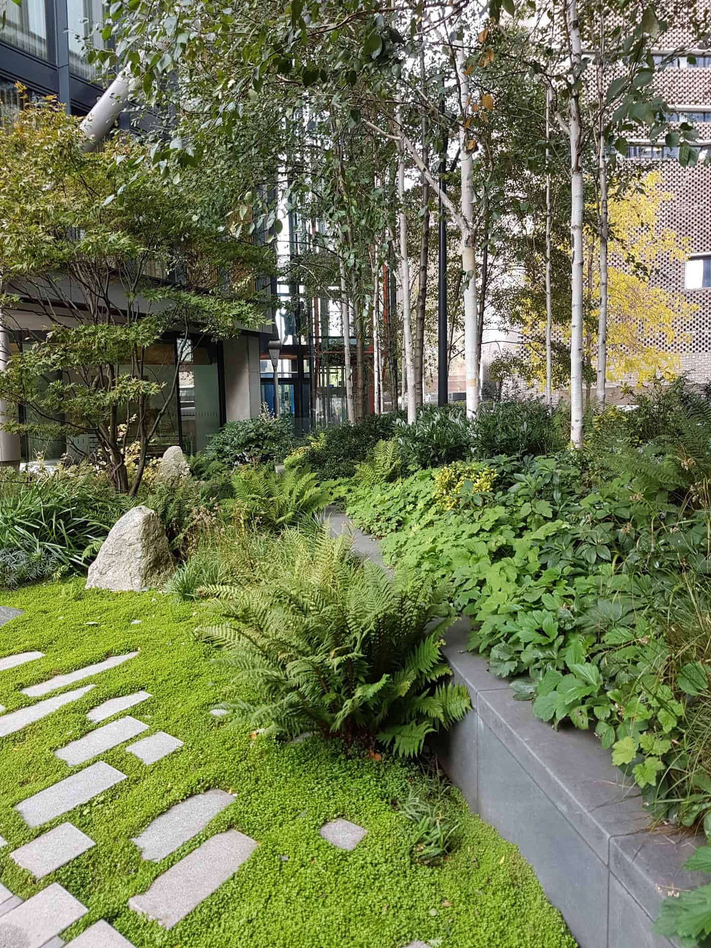 NEO Bankside garden ground cover plants shade
