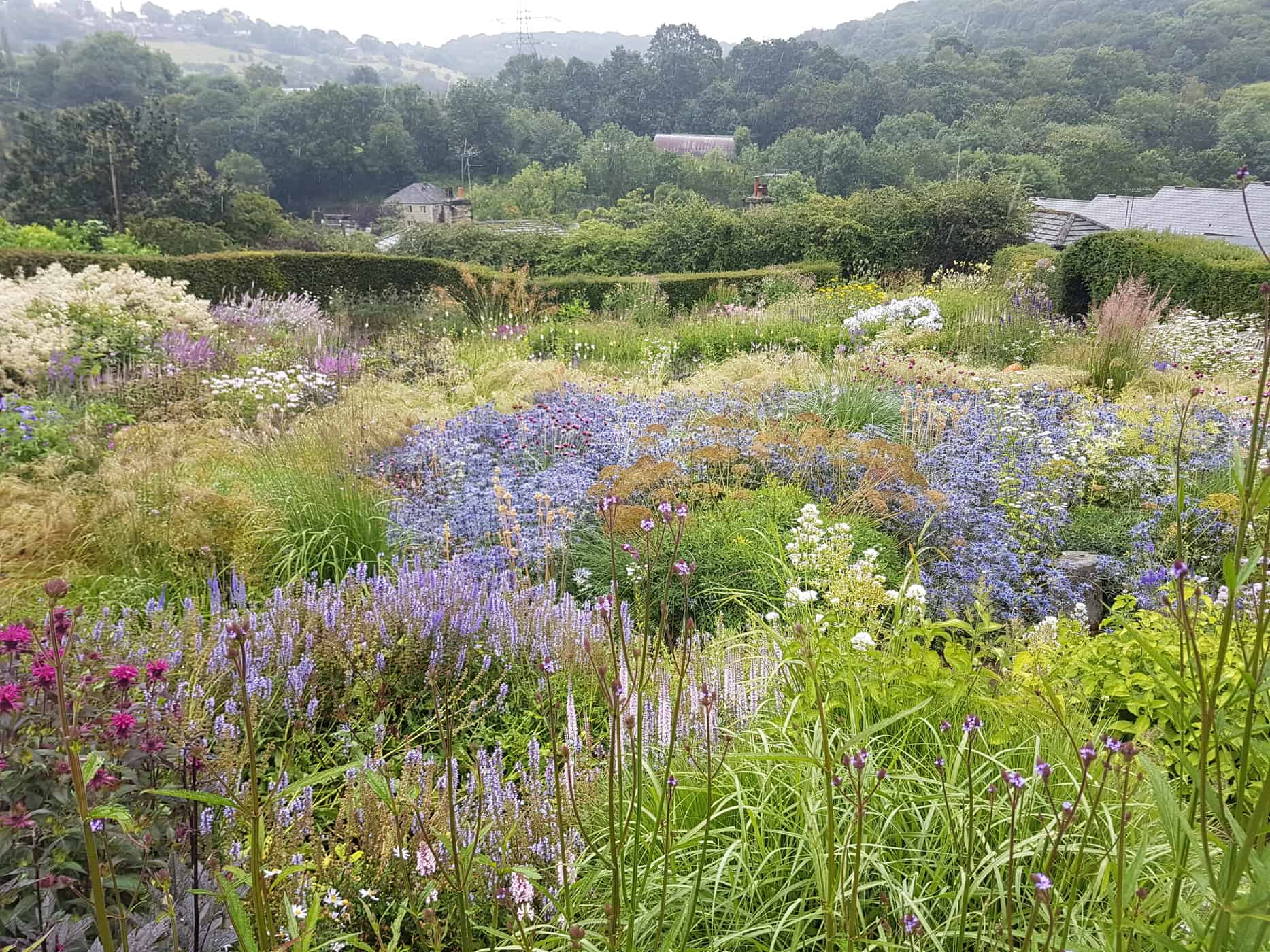 Dove Cottage Garden - best nurseries for perennials and grasses